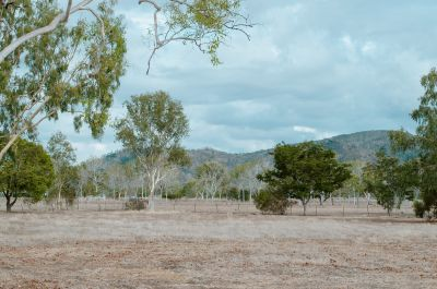 ALLIGATOR CREEK, QLD 4816