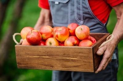 Low Rent Fruit & Vegetable Shop – Ref: 14536