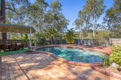 Views - Inground Pool - 1203m2 - 30 ks to Brisbane CBD