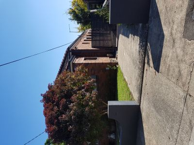 23 William Street Ashfield