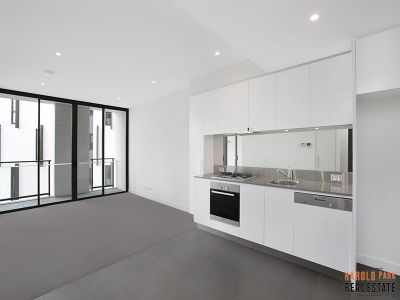 Large 1-Bedroom Apartment in Harold Park