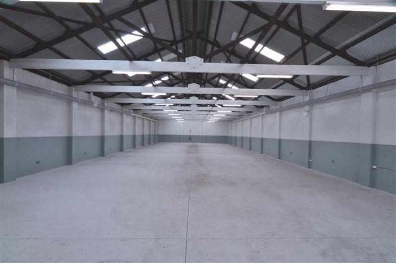 Clean & Open Commercial Building