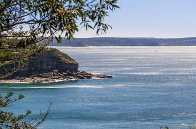 , Whale Beach