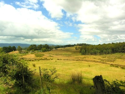 Private Pastureland 21 Acres