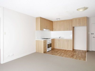 RENOVATED APARTMENT WITH U/C PARKING, WALK TO NORTH SYDNEY STATION