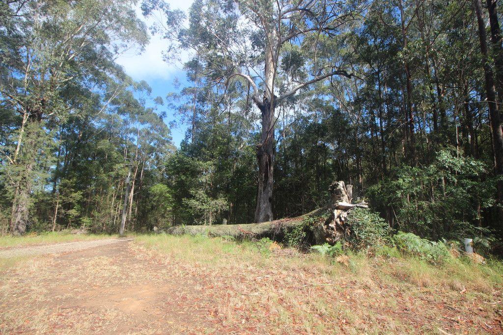 , TELEGRAPH POINT NSW 2441
