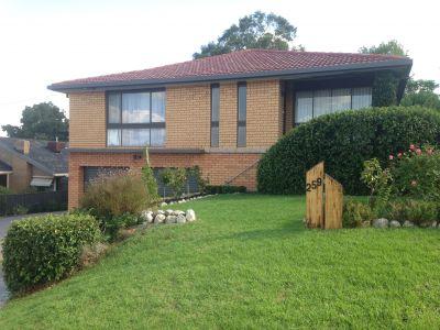 LAVINGTON, NSW 2641