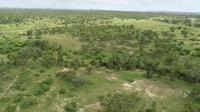 40 Acres Freehold LAND - Flinders Highway