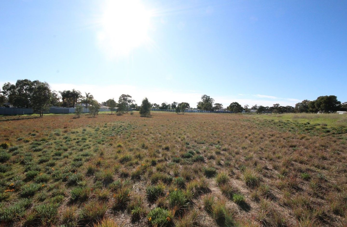 Lot 8/ Witton Street, Dimboola VIC 3414