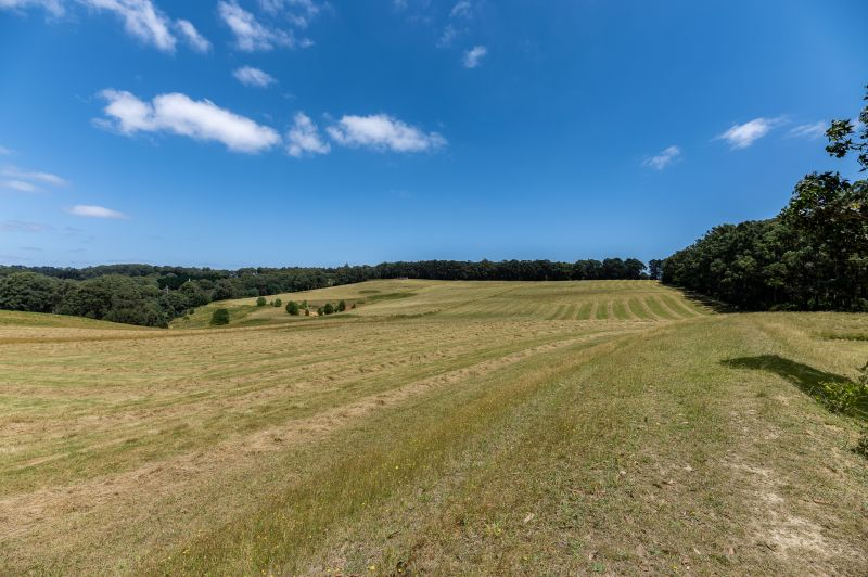 THE BEST 15 ACRE PASTORAL PROPERTY IN THE DISTRICT