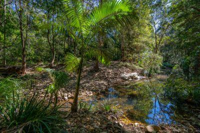 Tranquil Rainforest Hideaway on Bonogin Creek