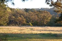 Lot 3 178 - 196 Valley Road Hazelbrook, Nsw