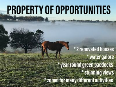 THE SPRINGS YORNUP; PROPERTY OF OPPORTUNITIES