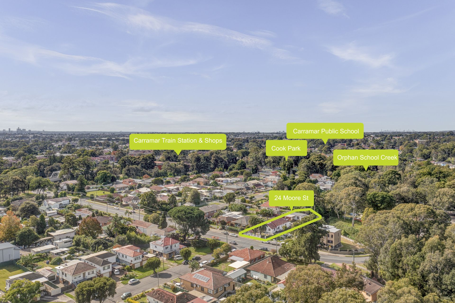 24 Moore Street, Canley Vale NSW 2166