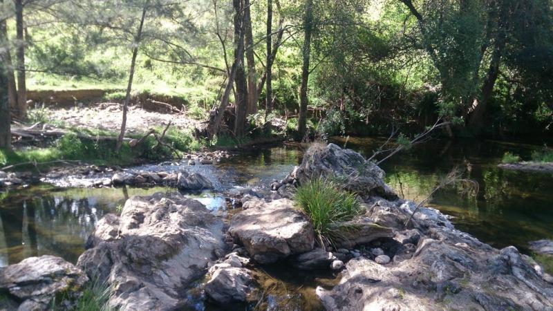 , YARROWITCH NSW 2354