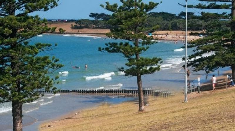 SURF COAST - ICONIC FISH AND CHIPS
