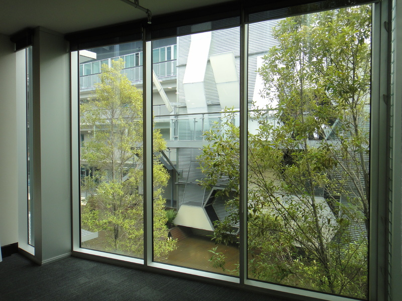 Level 1 Central courtyard suite in Lifestyle Working Brookvale