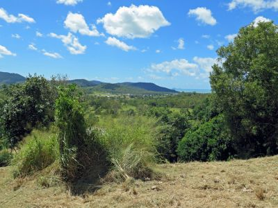 CANNON VALLEY, QLD 4800