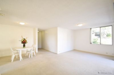 QUIETLY POSITIONED - LIGHT-FILLED - LIFESTYLE APPEAL