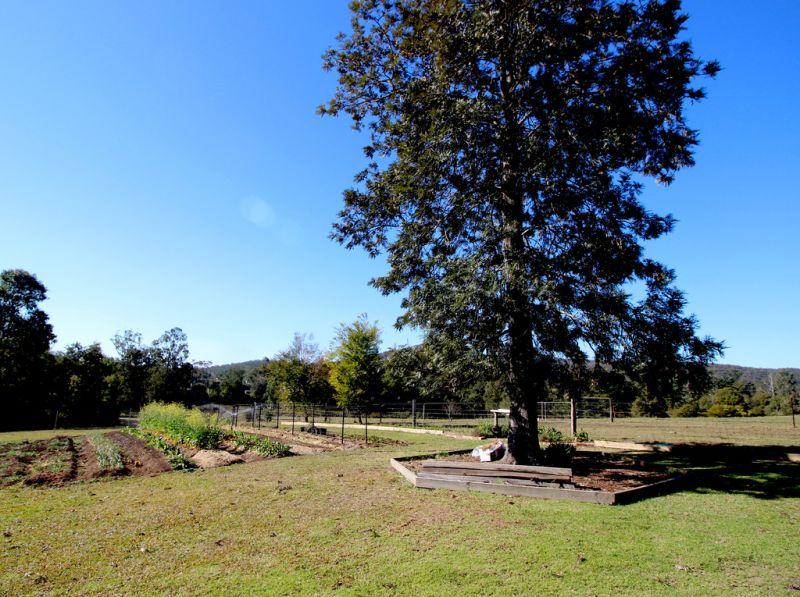 10 River Front Lifestyle Acres, Rollands Plains near Port Macquarie