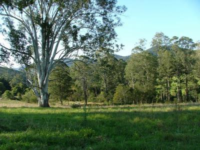 IDYLLIC COUNTRY LIVING - BIG RIVER ACCESS