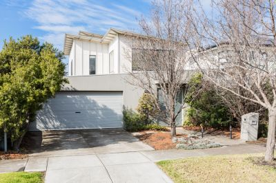 Modern Architecturally Designed 5 Bedroom Family Home Ideally Located In This Quiet Tree Lined Street.