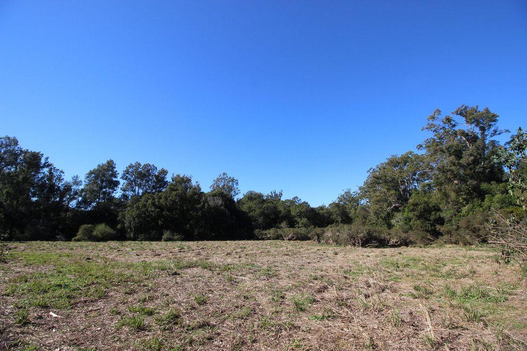 444 Upper Rollands Plains Road, UPPER ROLLANDS PLAINS NSW 2441