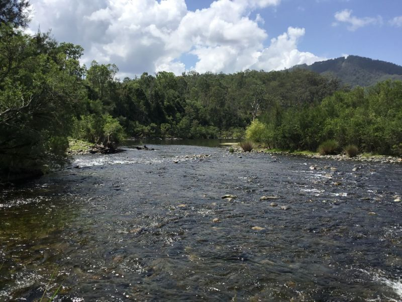 LOWER CREEK, NSW 2440