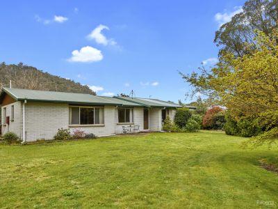 34574 Tasman Highway, Scottsdale