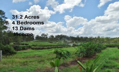 ESTABLISHED TROPICAL FRUIT ORCHARD – 31 ACRES – 4 BEDROOM HOME