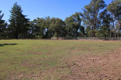 equestrian haven situated on over 15 elevated acres with stunning blue mountain views.