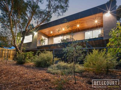 CONTEMPORARY BUSHLAND LIVING