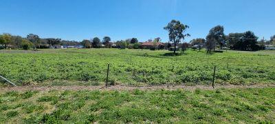 1700sqm vacant land