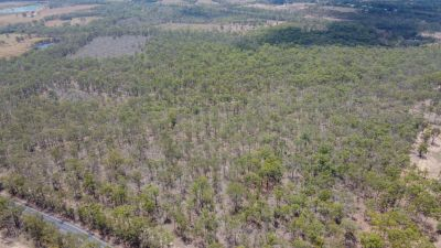 20 ACRE BUSH BLOCK 25 MINS FROM TOWN!