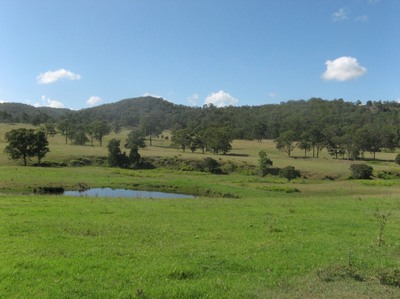 Shares Available in Beautiful Organic Farm Village near Paterson, NSW