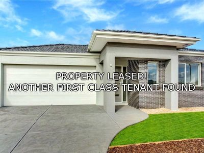 FIRST CLASS TENANT FOUND! Stop Looking, You've Found What You're Searching For!