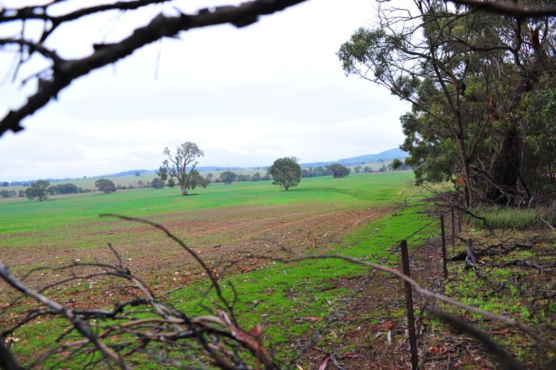 Lot 169A/ Joel South Road, Joel Joel VIC 3384