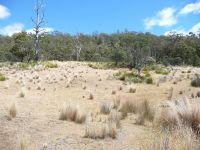 Lots 2-5 Tasman Highway