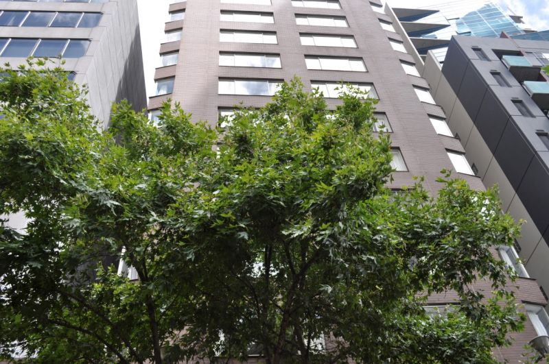 Furnished Studio in Lonsdale Height Apartment!