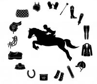 Business For Sale - Saddlery & Equine Supplies - Horse Tack Gear Apparel