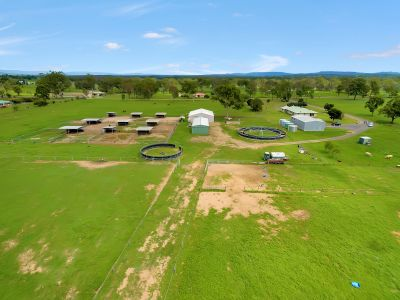 Premier Equine Facility - PRIVATE VIEWINGS AVAILABLE!