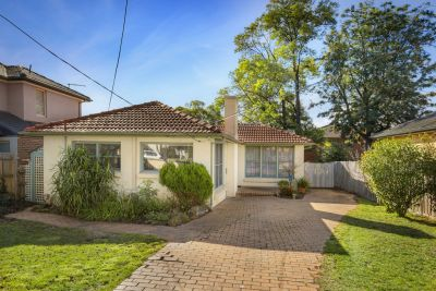 41 Romoly Drive, Forest Hill
