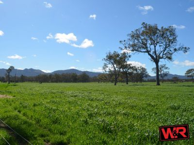 Lot 5655 Yellanup Road, Narrikup