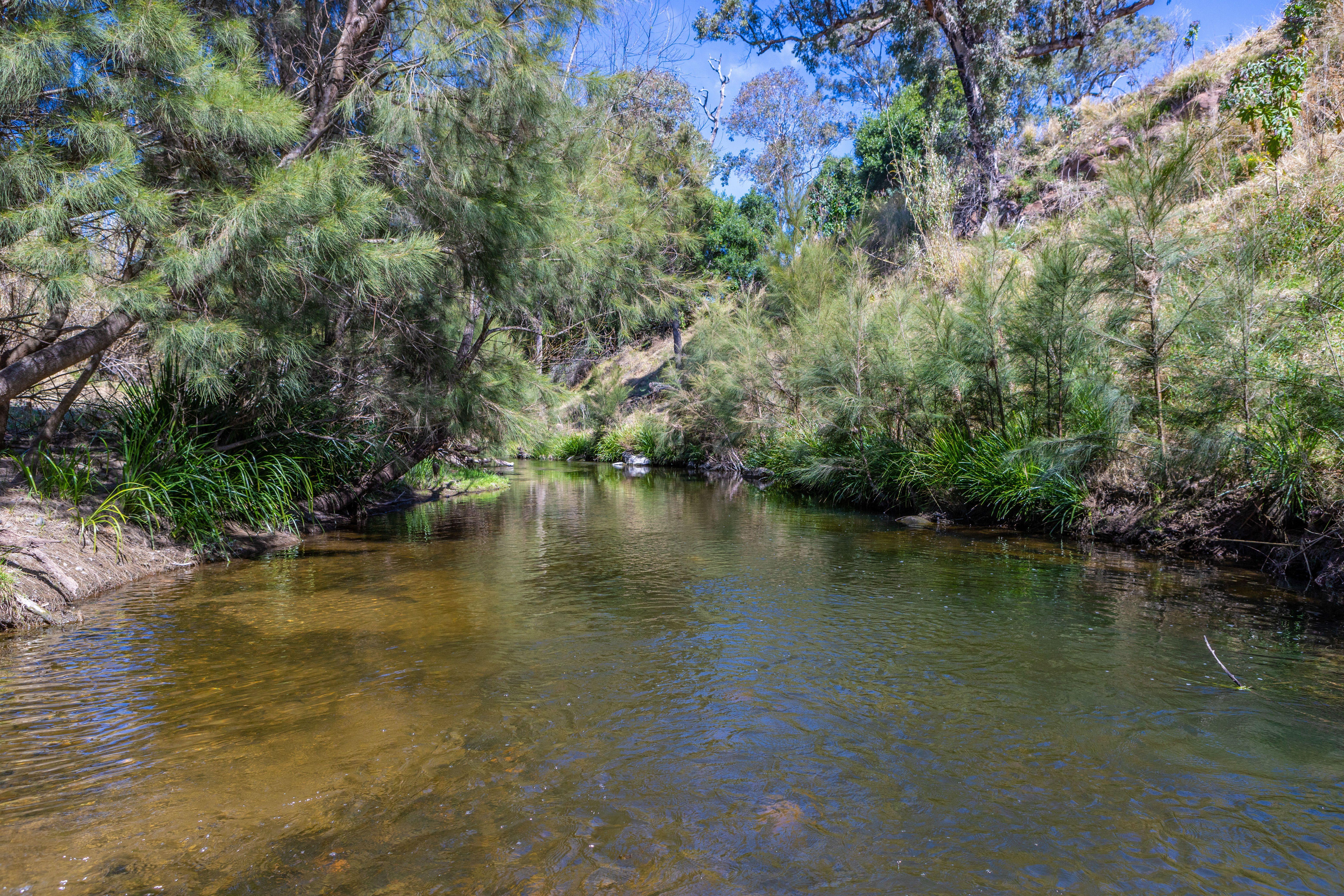 11 of Lot/ Hanleys Creek Road Tabbil Creek 2420