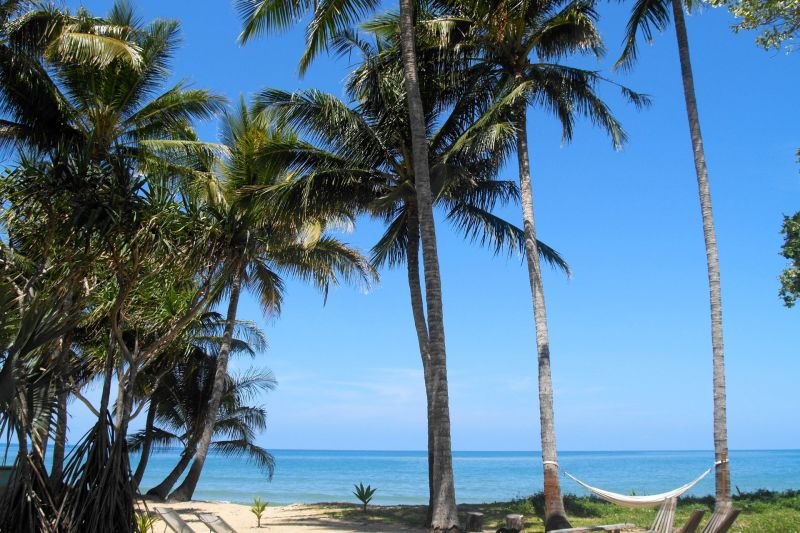 Luxury Tropical Oasis. Owner Occupy /  Investment / Business Opportunity. Oak Beach Cottage near Port Douglas.