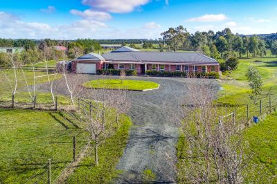 Lifestyle Property with Modern Home on 5 Acres