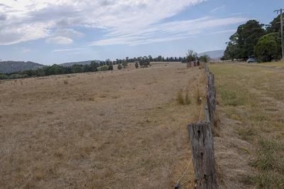 Ten acres of pasture near  WHITTLESEA