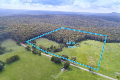 40 ACRES OF STUNNING LAND