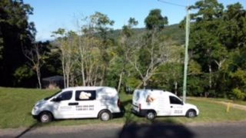 LIVE AND WORK ON HAMILTON ISLAND – LIFESTYLE CARPET CLEANING BUSINESS