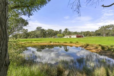 10 Glorious Acres - Bargo